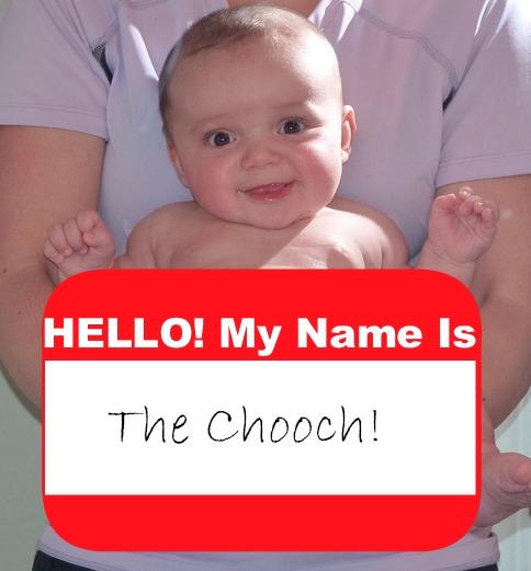 Hi My Name Is The Chooch