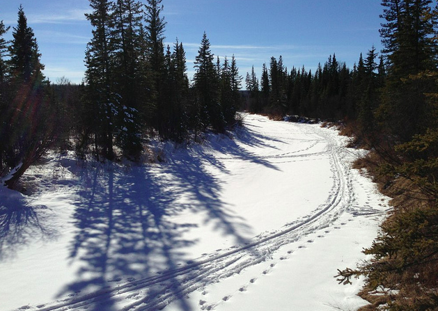 hiking in the weaselhead