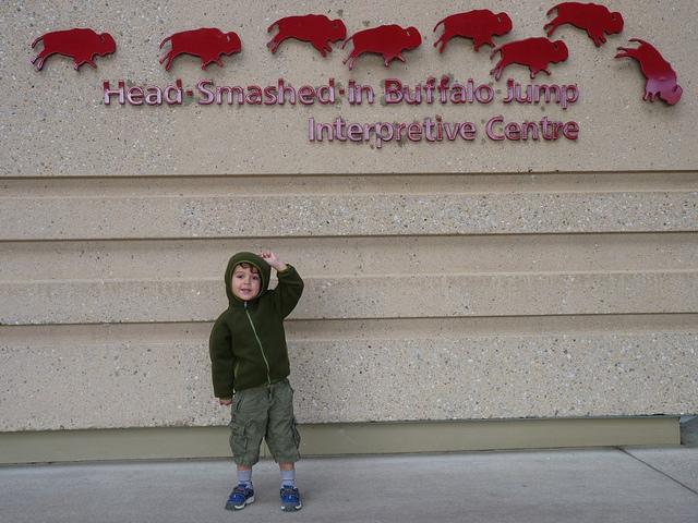 Head Smashed In Buffalo Jump