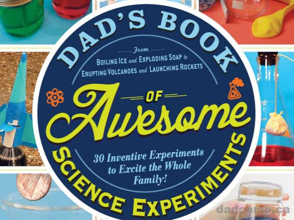 Dad's Awesome Book Of Science Projects