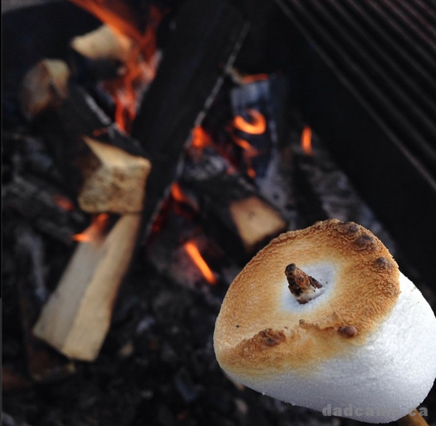 Perfect Roasted Marshmallow