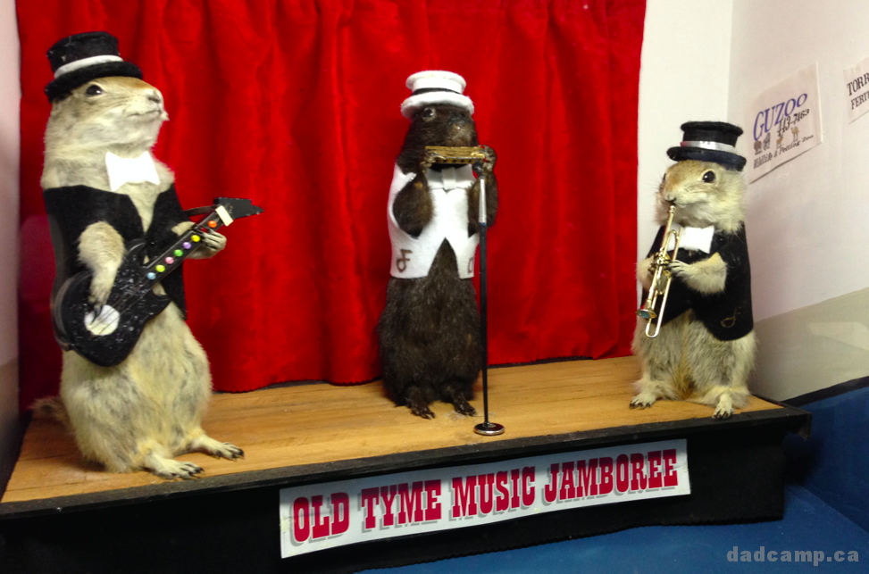 Gopher Hole Museum in Torrington