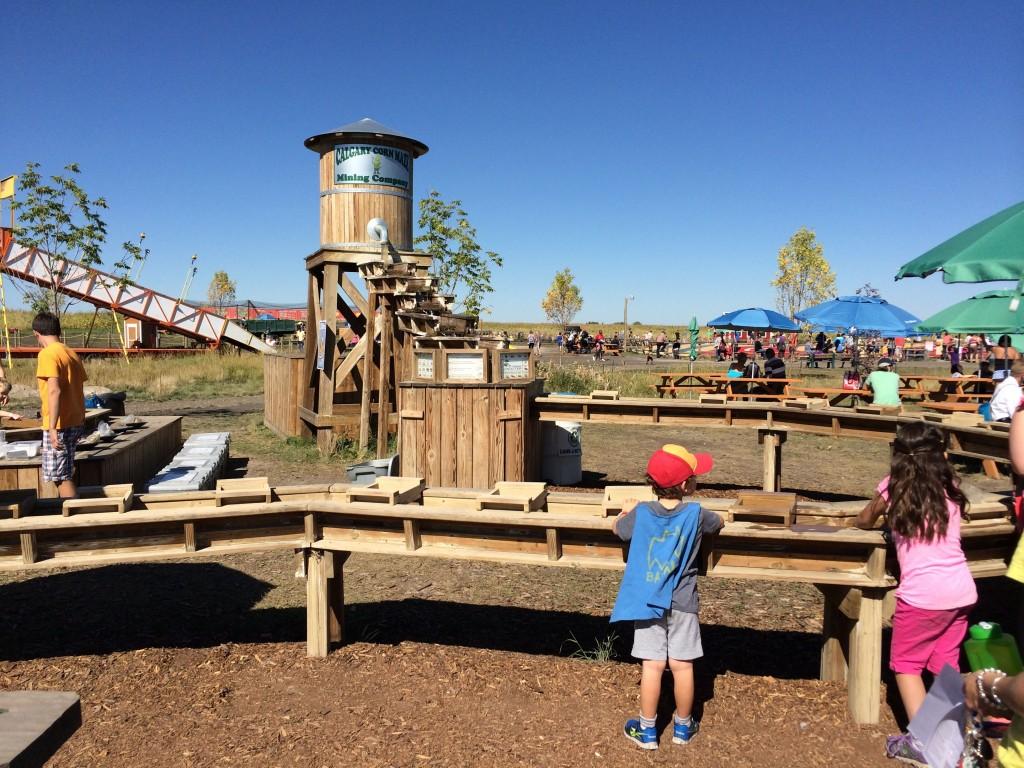 trasure hunt at Calgary Corn Maze
