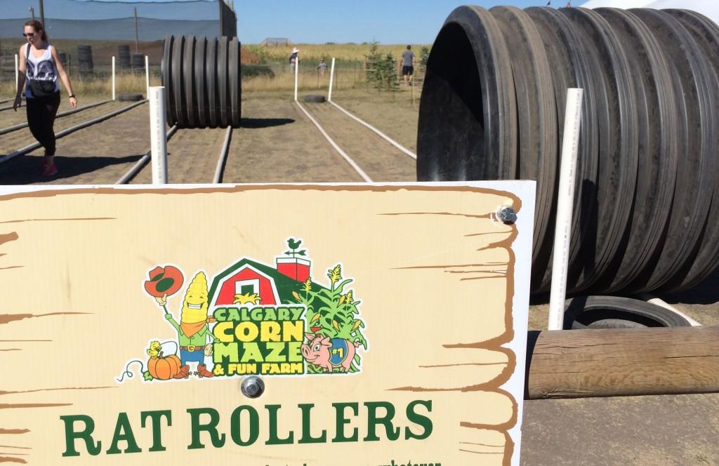 rat roller Calgary Corn Maze
