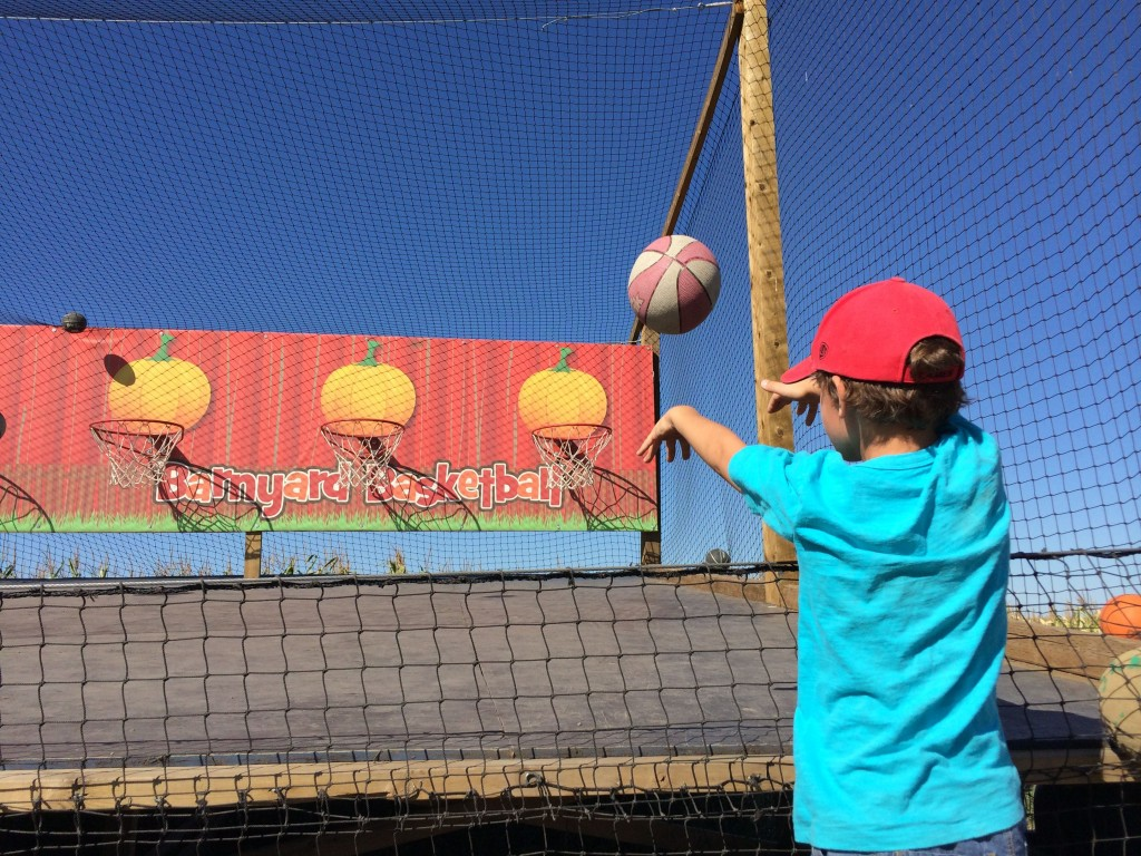 Pop a shot at Calgary Corn Maze