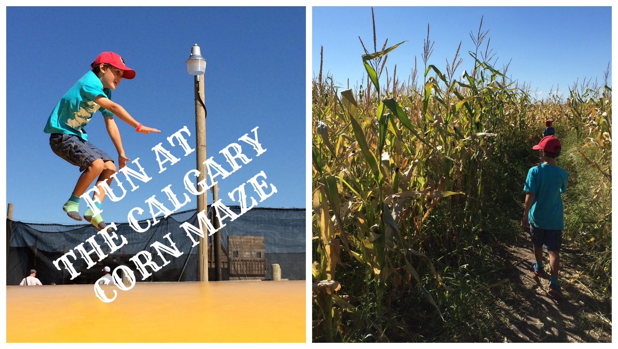 Fun At The Calgary Corn Maze