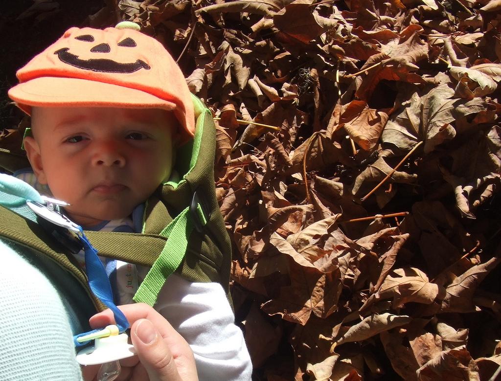 Pumpkin Hat 2007