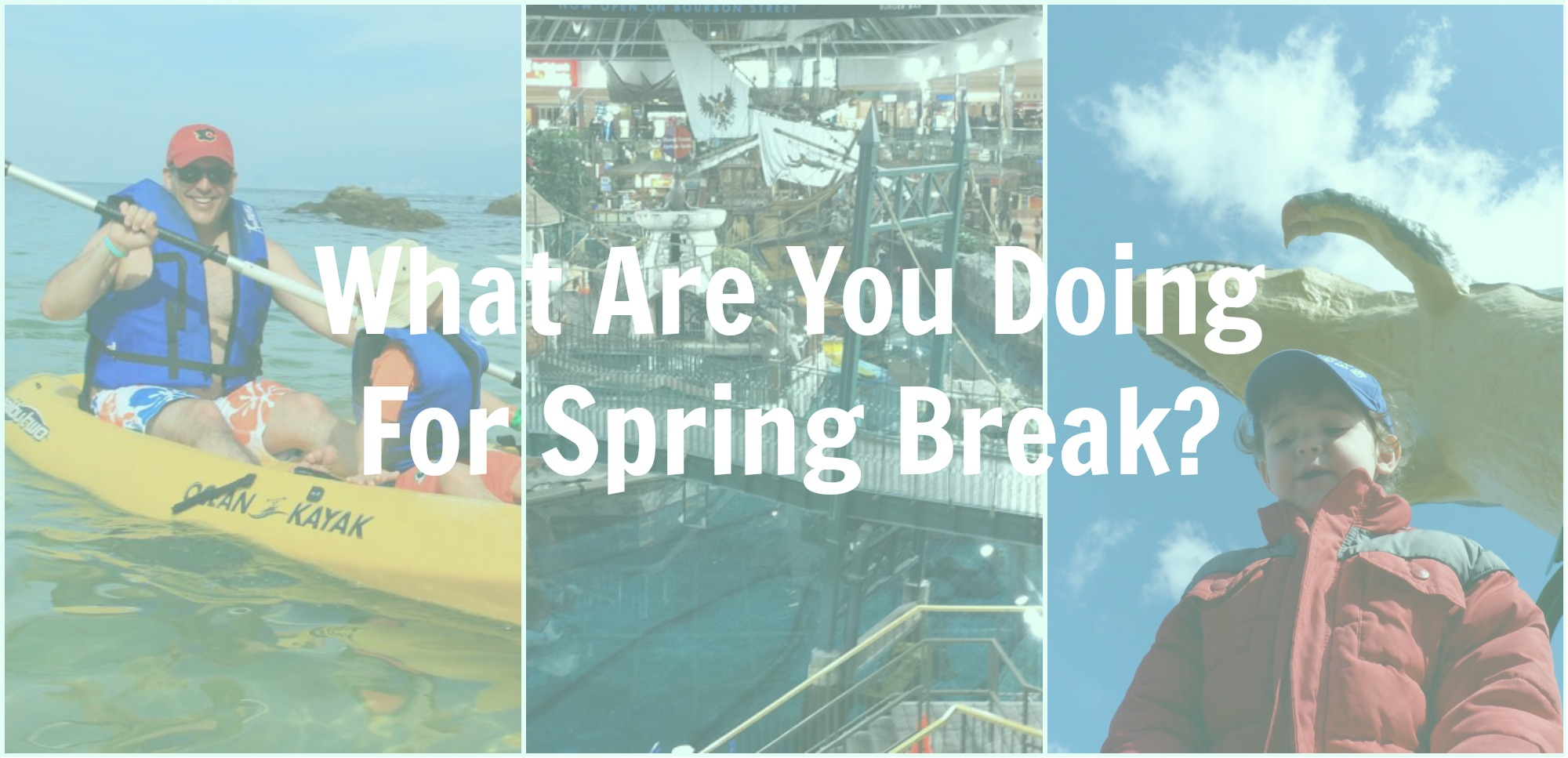 Some Spring Break Ideas In Calgary