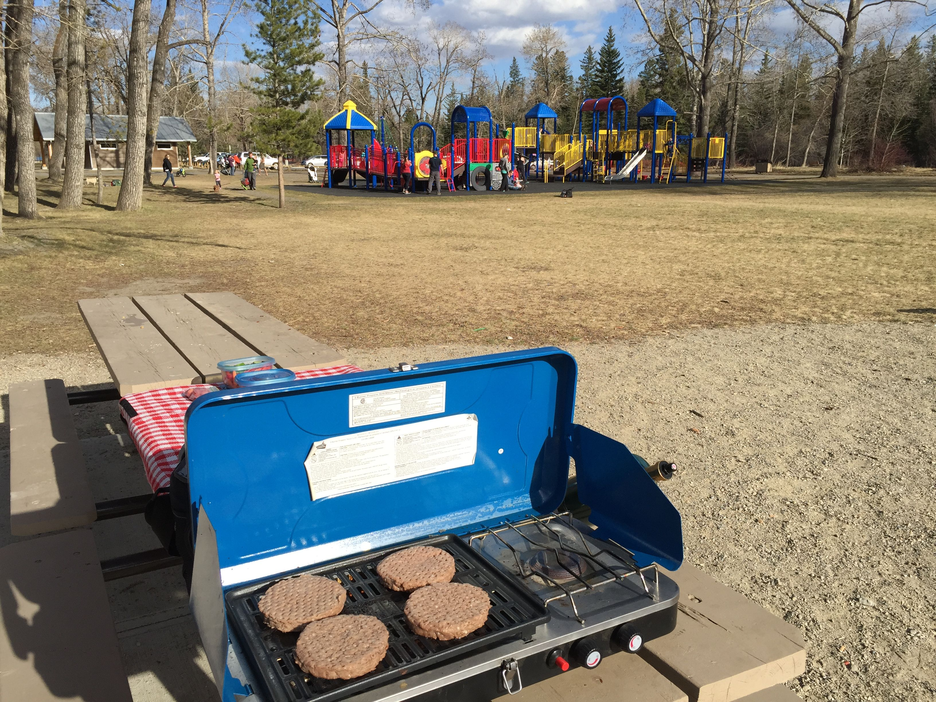 2015-04 playground picnic - 10
