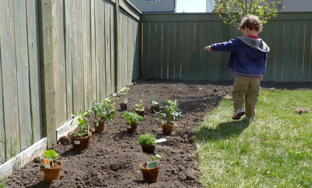 Learning Gardening Lessons On The Prairies