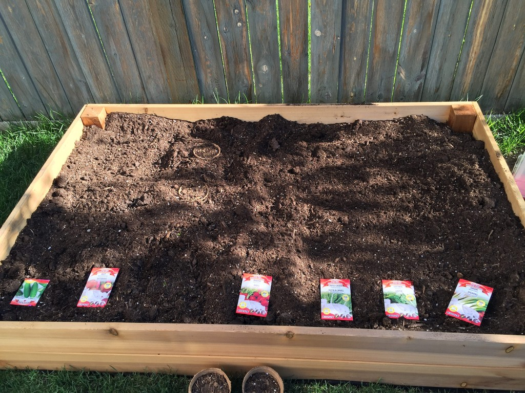 planning my garden box