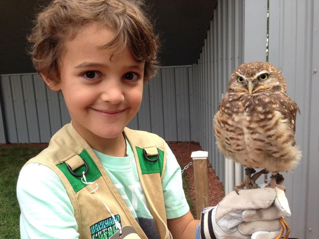 Alberta Bird of Prey Centre