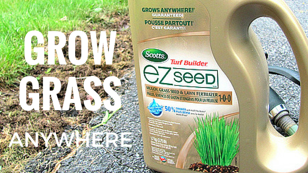 Grow Grass Anywhere