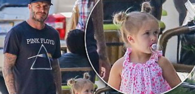 David Beckham Bites Back At Parenting Critics