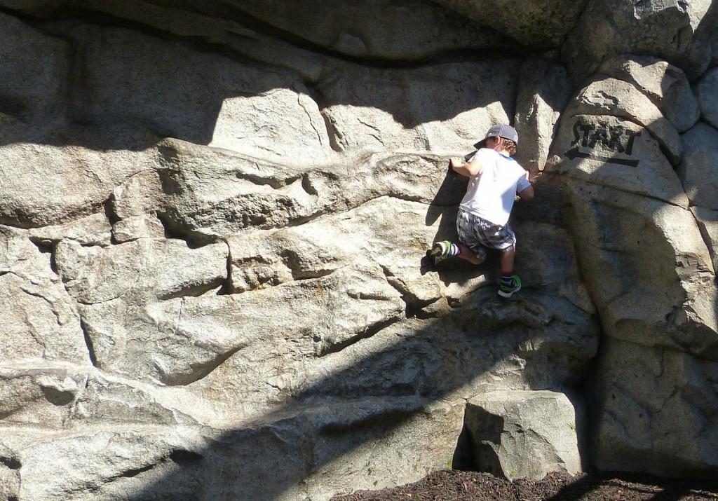 charlie rides disney rock