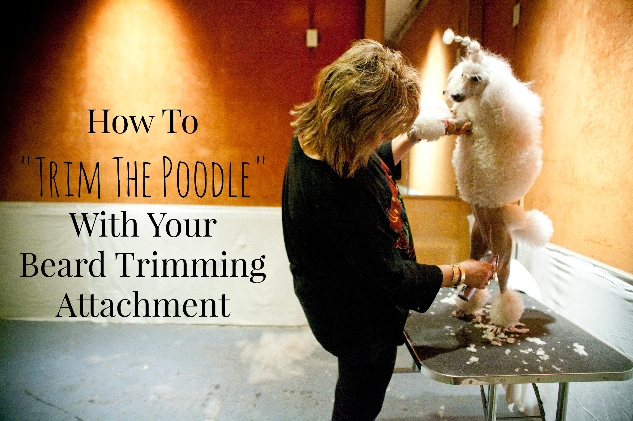 How To Trim The Poodle