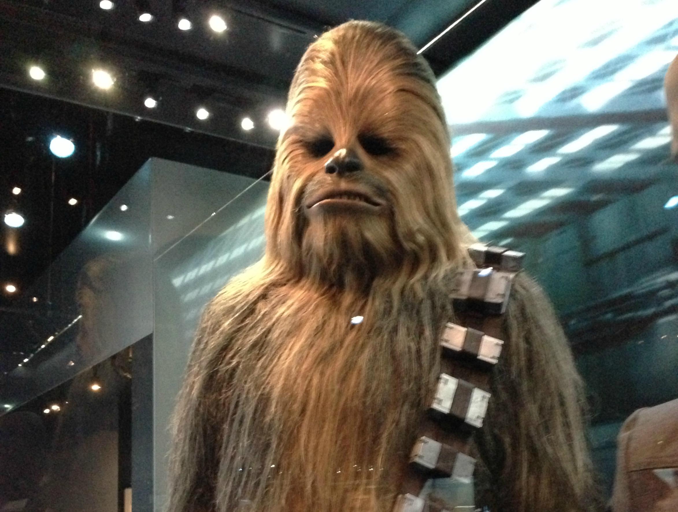 Chewbacca at Star Wars Identities