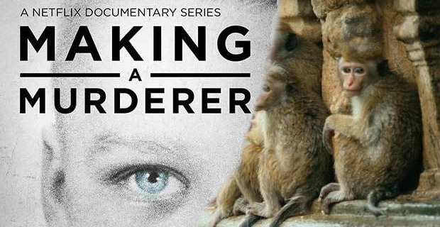Making A Murderer Monkey Kingdom