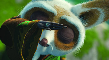 Master Shifu searching for Inner Peace. via Dreamworks