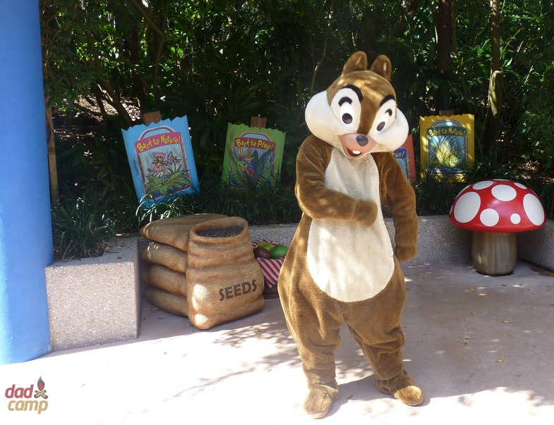 Chip and Dale at Disney's Animal Kingdom