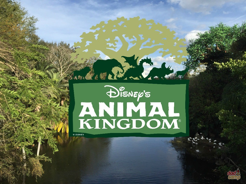 disney s animal kingdom wallpaper - photo #44