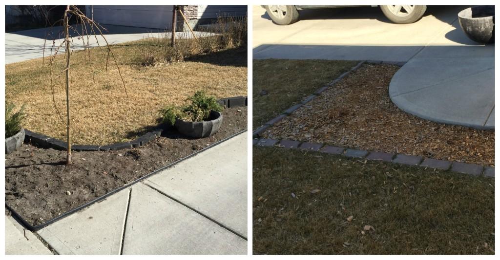 driveway gardens