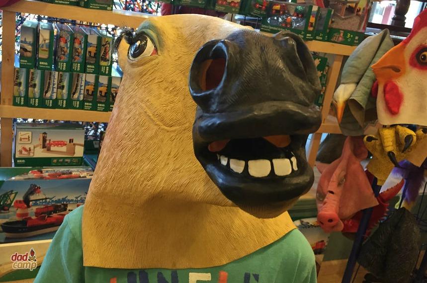 Figpickle's Toy Store CDA - DadCAMP