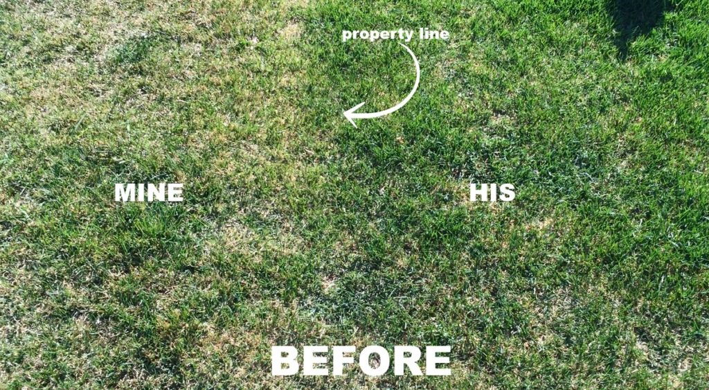 before lawn