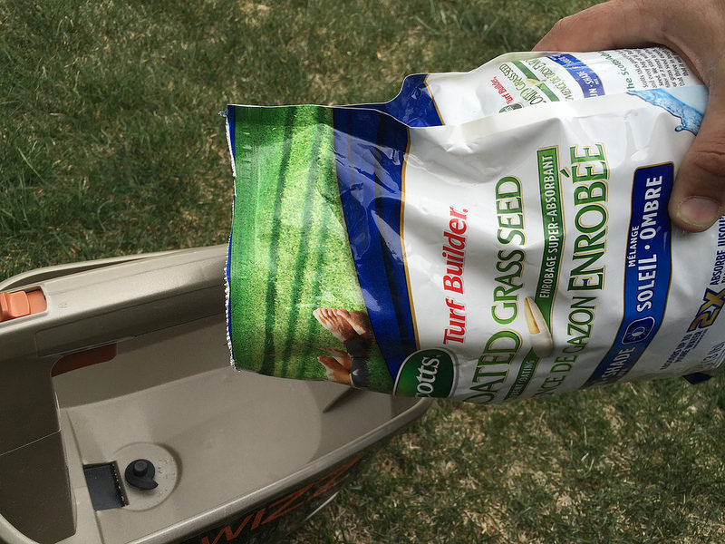scotts coated grass seed