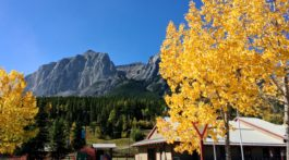 Canmore Nordic Centre in fall