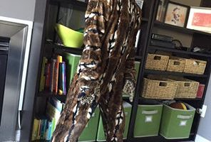 Zacharie Halloween Leopard