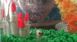 Charllie and his betta fish, Harold.