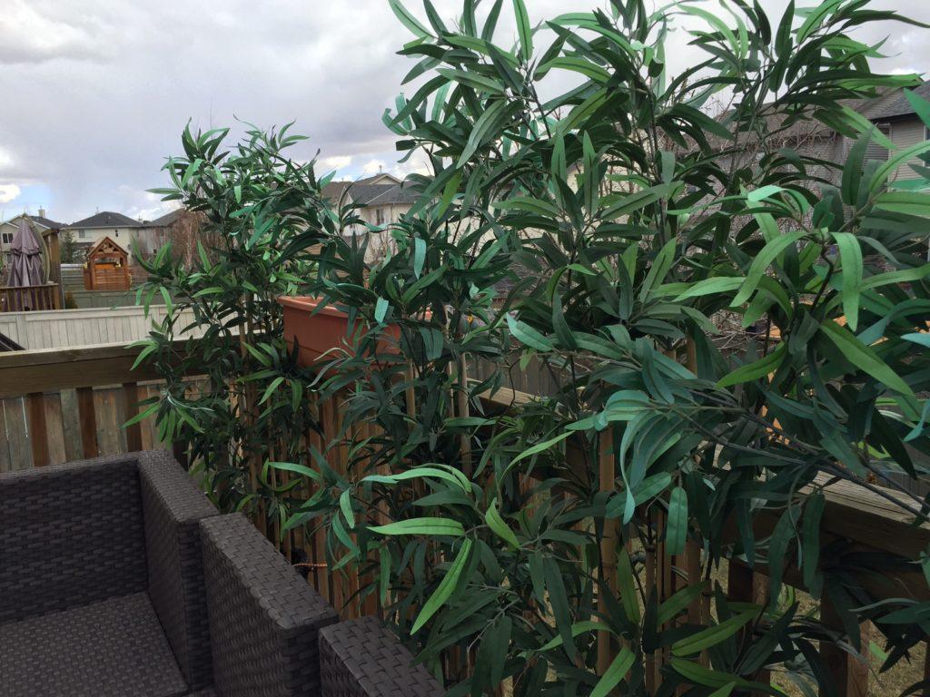 fake plants2